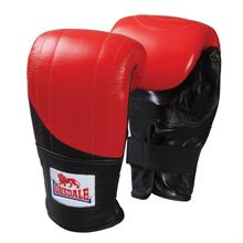 /ProductImages/609891/middle/pro-fitness-style-bag-mitt.jpg